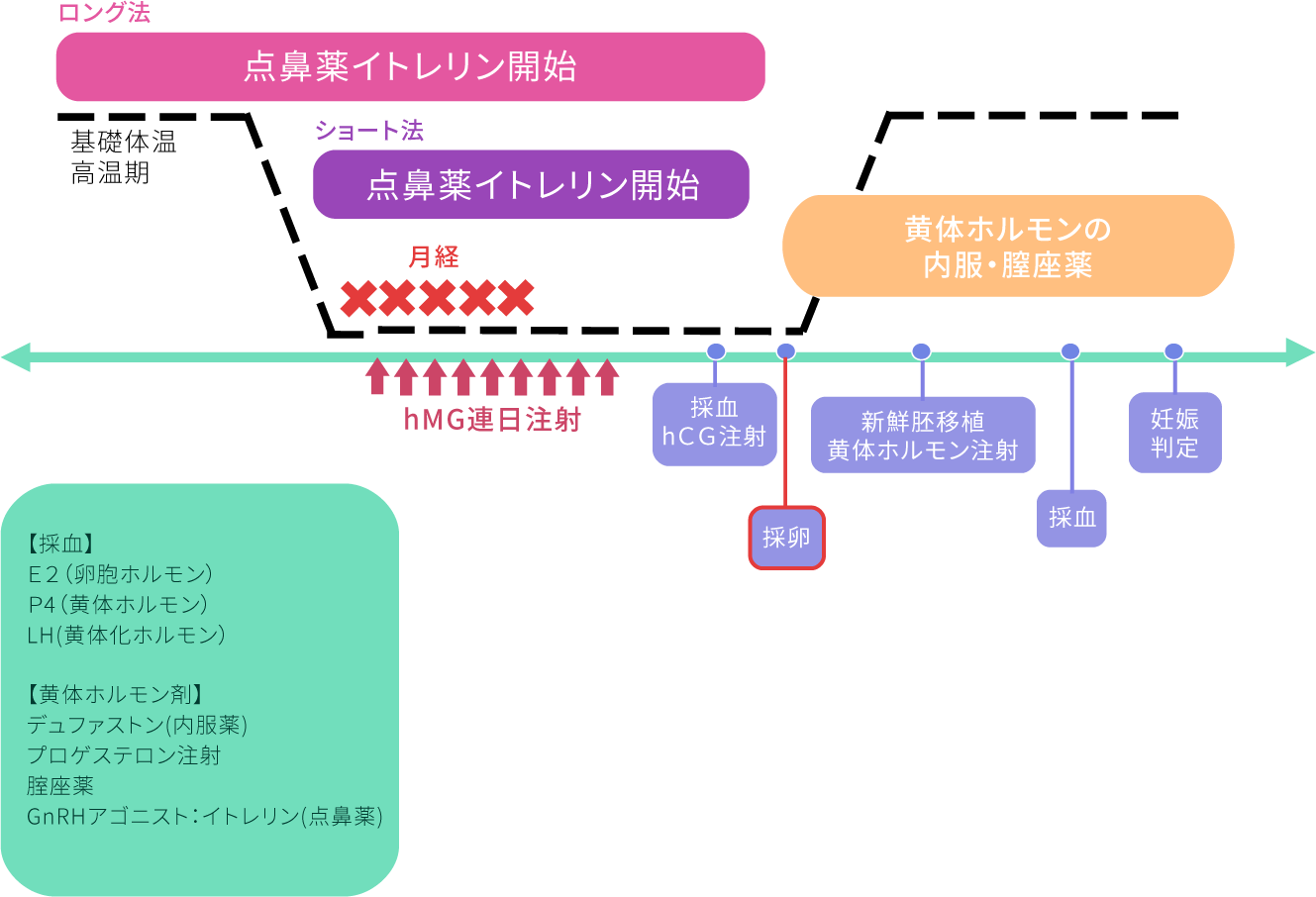 排卵誘発法~ロング・ショート法