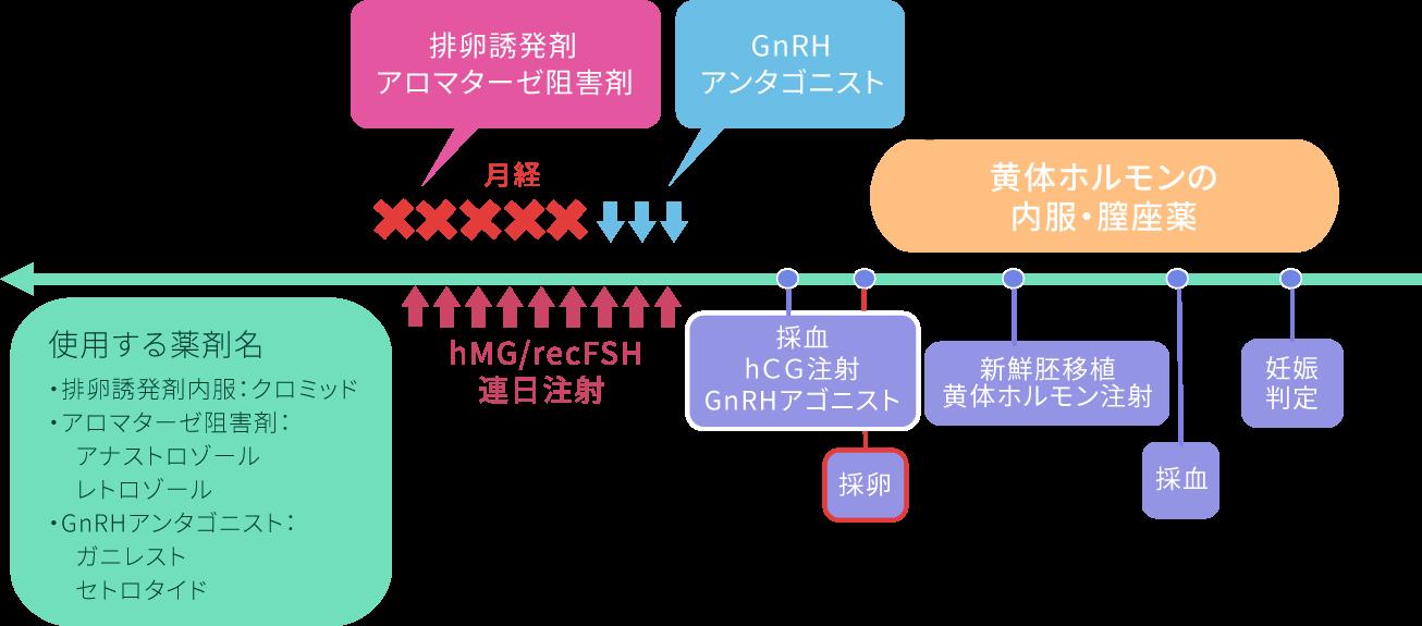 排卵誘発法- GnRHアンタゴニスト法