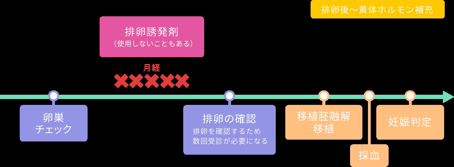 凍結融解胚移植~自然周期法
