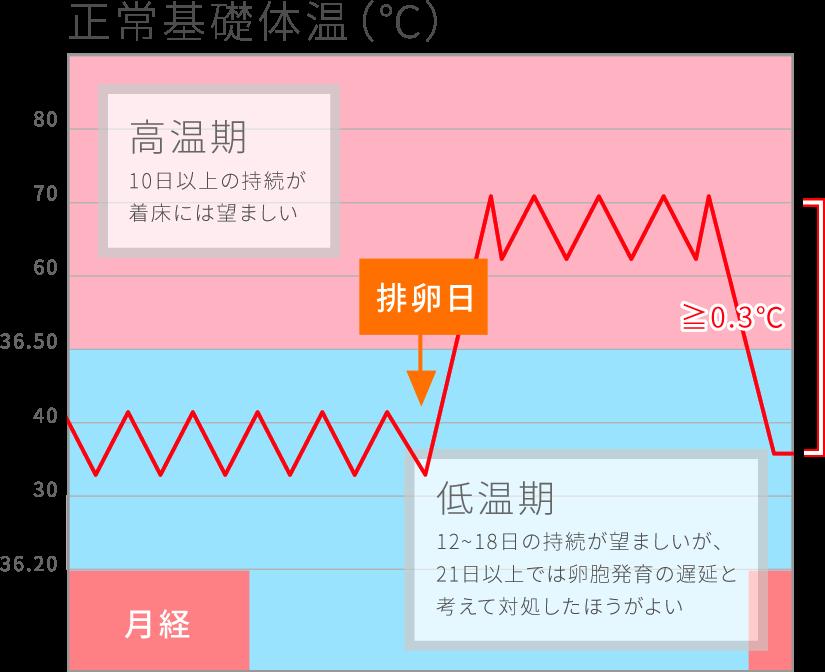 正常基礎体温